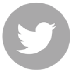 Twitter Gray Png 01